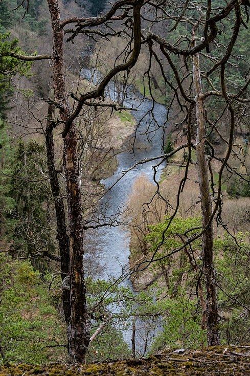 Na druhém břehu se ve výšce 350 m n. m. naskýtá pohled na meandry řeky Střely. (protiproud, pohled směr Plasy)
