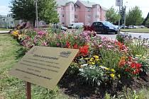 Záhon porozumění společně vytvořili městský zahradník Dobřan, zahradník Psychiatrické nemocnice a pacienti. Najdete ho u  kruhové křižovatky ve směru k náměstí.