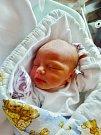 Marek Štěpánek se narodil 25. listopadu ve 14:10 mamince Evě a tatínkovi Radkovi z Plzně severu. Po příchodu na svět v plzeňské FN vážil jejich prvorozený synek 3180 gramů a měřil 50 cm.