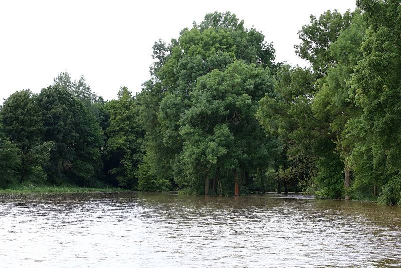 Koterov - meandr řeky Úslavy, zaplavené louky