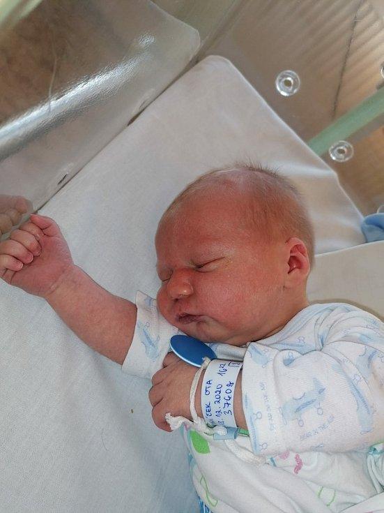 Ota Zajíček z Břas se narodil v plzeňské Mulačově nemocnici 28. prosince 2020 (3760 g, 51 cm) mamince Lucii a tatínkovi Pavlovi. Doma na brášku čekali sourozenci Karolinka, Veronika, Pavla a nejmladší Pavlík.