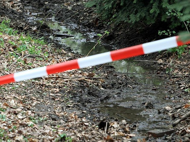 Místo, kde se v Borském parku v Plzni popálily malé děti