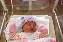 Leontýna Nová se narodila 30. prosince v 8:28 rodičům Janě a Jakubovi z Domažlic. Po příchodu na svět v porodnici FN na Lochotíně vážila sestřička Matýska (2,5) 2850 gramů a měřila 46 centimetrů.