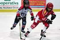 Hokejový klub Pilsen Wolves (hráč vpravo) založený Václavem Zunou  už čítá kolem 130 dětí, další nábory probíhají. Hlavní myšlenkou je dát i dětem z nemajetných rodin šanci věnovat se lednímu hokeji.