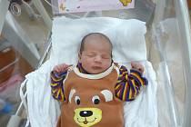 Alenka (3,20 kg, 49 cm) se narodila 19. ledna v 1:00 ve FN v Plzni. Na světě ji přivítali rodiče Lenka a Petr Kratochvílovi z Plzně. Doma se na sestřičku těší dvouletý Péťa.