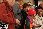 Druhý ročník výstavy hub se konal v Nezvěsticích.