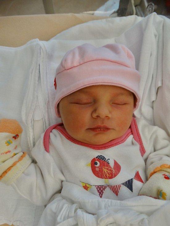Karolína Plšková se narodila 12. listopadu v9:03 mamince Janě a tatínkovi Jaroslavovi zPlzně. Po příchodu na svět vplzeňské FN vážila jejich prvorozená dcerka 3860 gramů a měřila 50 centimetrů.