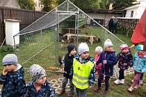 Chovatelé vystavují králíky, drůbež i ptactvo