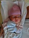 Marie Tománková se narodila 13. srpna v 6:39 mamince Petře a tatínkovi Josefovi z Plzně. Po příchodu na svět ve FN vážila sestřička Marka (16), Davida (9) a  Mathiase (4) 3480 gramů a měřila 52 cm