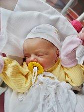 Natálie Plachá se narodila 21. října v 7:16 mamince Lucii a tatínkovi Milanovi z Plzně. Po příchodu na svět v plzeňské fakultní nemocnici vážila sestřička čtyřletého Filípka 3350 gramů a měřila 50 cm.