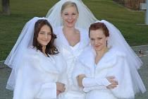 Mušketýři svedli v Plzni souboj o nevěsty