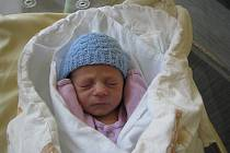 Tobiáš (2,30 kg, 47 cm) se narodil 18. května v 7:00 v plzeňské Mulačově nemocnici. Své prvního syna přivítali na světě maminka Jitka Mourková a tatínek Tomáš Mourek z Dobřan