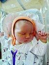 Anna Benešová se narodila 16. června v 18:58 mamince Marii a tatínkovi Pavlovi z Plzně. Po příchodu na svět v plzeňské FN vážila jejich prvorozená dcerka 4210 gramů a měřila 52 centimetrů.