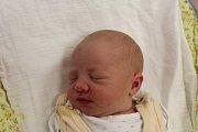 Nikola Kulhánková se narodila 11. ledna ve 4:25 mamince Adéle a tatínkovi Michalovi z Dobřan. Po příchodu na svět v klatovské porodnici vážila sestřička dvouletého Ondráška 3500 gramů a měřila 49 cm.