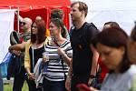 Festival Stock Mix Fest