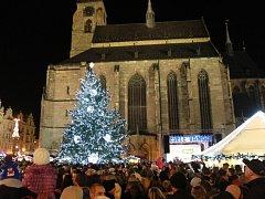 Vánoční strom na náměstí Republiky v Plzni