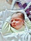 Laura Vopalecká se narodila 29. června v 9:07 mamince Michaele a tatínkovi Janovi z Chválenic. Po příchodu na svět v plzeňské FN vážila sestřička sedmileté Denisy 3950 gramů a měřila 51 centimetrů.