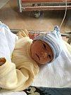 Filip Borkovec se narodil 19. února v 19:17 mamince Šárce a tatínkovi Janovi. Po příchodu na svět v plzeňské fakultní nemocnici vážil jejich prvorozený synek 3430 gramů a měřil 51 centimetrů
