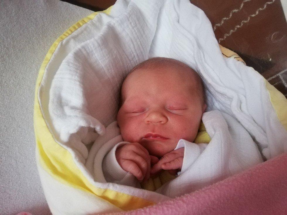 Aneta Kučerová ze Štěpánovic se narodila 3. prosince v 16:19 hodin (3630 g, 51 cm). Doma se na miminko těší starší sestřička Natálka. Tatínek nestihl přijet k porodu.