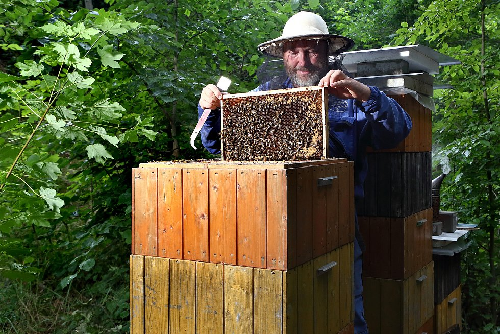 02 - Z úlů se postupně vyndavají plásty s medem a zároveň se kontroluje stav včelstva.