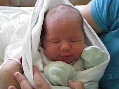 Tereza (3,90 kg, 53 cm) se narodila 30. dubna ve 22:25 v Mulačově nemocnici v Plzni. Na světě ji přivítali rodiče Jana a Rostislav Šestákovi z Letin. Doma se na sestřičku těší bráška Patrik (4,5)
