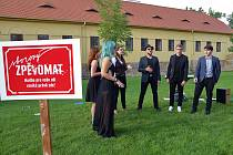 Zpěvomat - skupiny amatérských i profesionálních zpěváků zpívají na přání kolemjdoucích na ulici. Fotografie jsou z plzeňské Mlýnské strouhy.