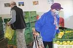 Obrovský zájem měli zákazníci o jablka a jiné ovoce v sadech na okraji Břas