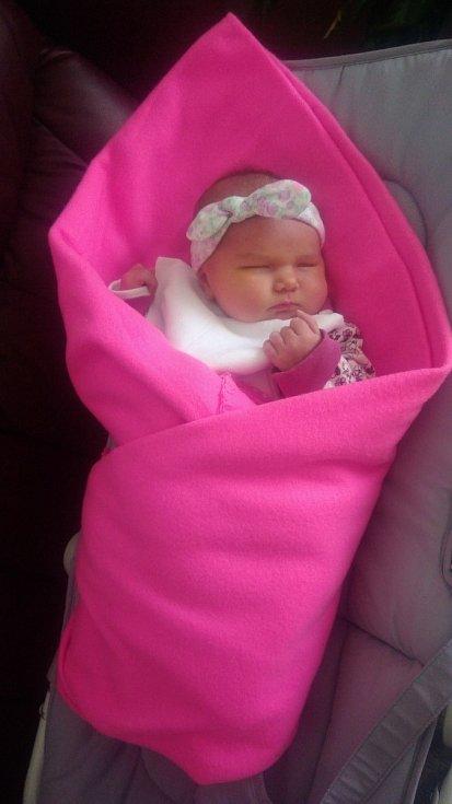 Sofie Horová z Líní se narodila v plzeňské FN Lochotín 17. ledna 2021 v 15:56 hodin (4160 g, 53cm) mamince Silvii a tatínkovi Danielovi.