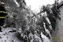 Během neděle vyjížděli hasiči k několika stovkám popadaných stromů.