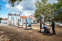Západočeská galerie vystavuje v prostranství U Zvonu reprodukce nejlepších obrazů ze svých současných sbírek, k vidění jsou zde díla od Antonína Slavíčka, Toyen, Emila Filly nebo Jana Zrzavého.