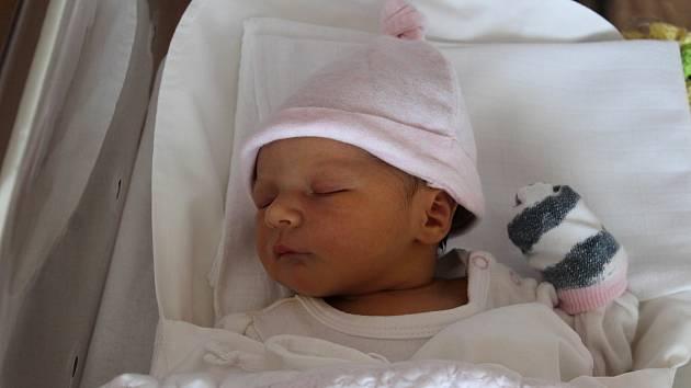 Sofie Stašková (3280 g, 49 cm) se narodila 27. července ve 21:53 v plzeňské fakultní nemocnici. Rodiče Veronika a Václav z Rokycan přivítali očekávanou prvorozenou dceru společně.