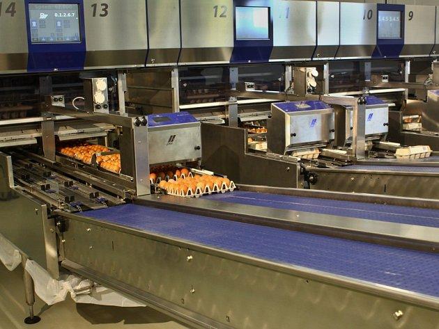 Přístroje kontrolují také správné uložení vajec špičkou dolů při teplotě mezi pěti a osmnácti stupni Celsia.