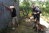 Na Kilometrovce. Josef Kolena se psem Jinem zadrželi loni v července muže, který sexuálně obtěžoval kolemjdoucí ženu