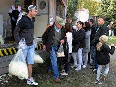 Festival zelí v Křimicích