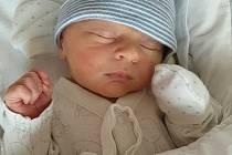 Michael Hofmeister ze Kdyně se narodil ve FN Lochotín v Plzni 30. ledna 2021 (3130 g, 49 cm) mamince Lence a tatínkovi Michaelovi.