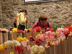 Výstava tulipánů v Nepomuku