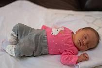 Ema Němcová se narodila 14. února ve 23:56 mamince Pavlíně a tatínkovi Bohdanovi z Plzně. Po příchodu na svět v plzeňské FN vážila sestřička dvouleté Ely 3490 gramů a měřila 50 centimetrů.