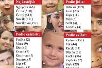 Nejčastější příjmení v Plzni