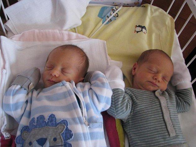 Maxmilián (2,35 kg, 47 cm) přišel na svět 5. 3. v 8:59 ve FN v Plzni. O minutu později se narodil Samuel (2,75 kg, 49 cm). Z obou chlapečků se radují maminka Šárka Dokoupilová a tatínek Jan Kesl z Plzně