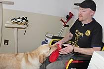 Labradorka Renča pilně trénuje, aby se uměla jaksepatří postarat o budoucího páníčka.