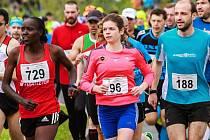 Nakonec druhá  Hellen Kimutai Jepkosgei z Keni (vlevo) běží po startu půlmaratonu v početném  klubku závodníků po boku Teodory Svejkovské a Františka Macha.