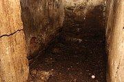 Tam, kde ještě v úterý  žily slepice, byl ovíkendu pouze zápach dezinfekce, peří, trus a několik vajíček. Všechno bylo třeba zlikvidovat na náklady Havlíčkových, ale stejně jako další chovatelé by se i oni měli dočkat odškodného