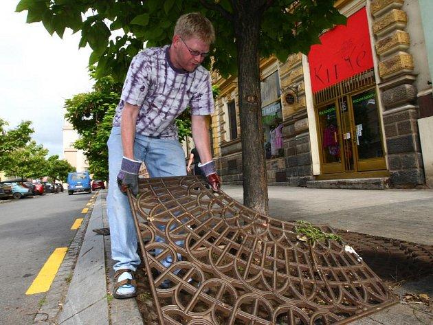 """Tak  takhle  taky vypadá práce odsouzence k veřejně prospěšným pracím. V Husově ulici jsme likvidovali plevel kolem stromů, """"kolegové"""" se zvěčnit nechtěli"""