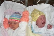 Nela a Karolínka Kubešovy zPřeštic jsou dvojčátka, prvorozené dcery maminky Danuše Velíškové a Martina Kubeše a také první vnoučátka i pravnoučátka zobou stran. Narodily se 10. 2., Nelinka (2,23 kg, 45 cm) v19:47 hod. a Kájinka (2,24 kg, 45 cm) v19:46