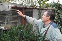 Zařízení na odchyt ptactva, které má na své zahradě Jaroslav Sojka z Blatnice u Nýřan