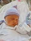 Sofie Vegová se narodila 25. prosince v17:19 mamince Iloně a tatínkovi Petrovi zMýta u Rokycan. Po příchodu na svět vplzeňské FN vážila sestřička tříleté Denisky 3460 gramů a měřila 49 cm.