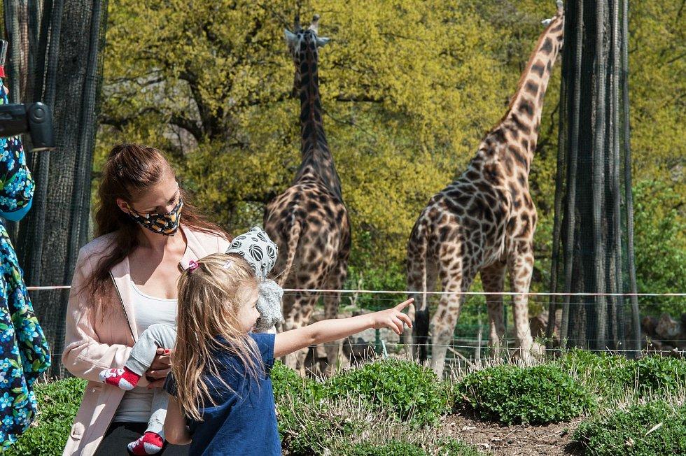 Z plzeňské zoologické zahrady.