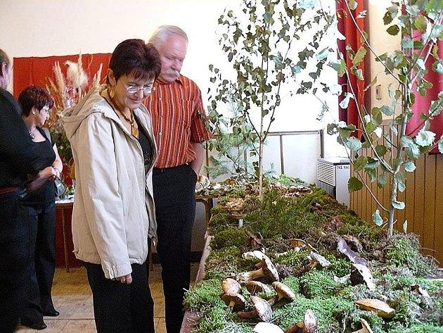Na snímku manželé Hermanovi alias Hujeři z Karlových Varů, kteří se přišli podívat, jestli na Blovicku nerostou jiné houby než u nich. Zjistili, že ne