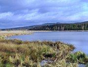Dolní Padrťský rybník patří k nejvyhledávanějším místům vCHKO Brdy. Cyklisty i pěší tam dovede vyznačená síť stezek.