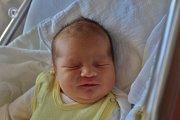 Tomáš Krieger se narodil 20. listopadu ve 2:40 mamince Ludmile a tatínkovi Michalovi z Přeštic. Po příchodu na svět v klatovské porodnici vážil bráška osmileté Denisky a dvouleté Anetky 3860 gramů a měřil 52 centimetrů